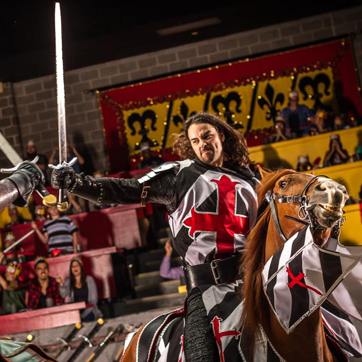 Midieval dinner jousting show orlando cheap tickets