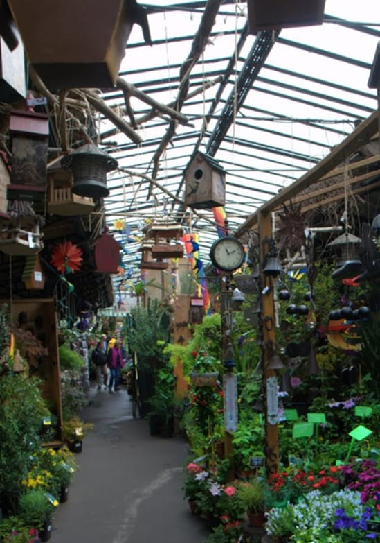 flower market notre dame paris bucket list