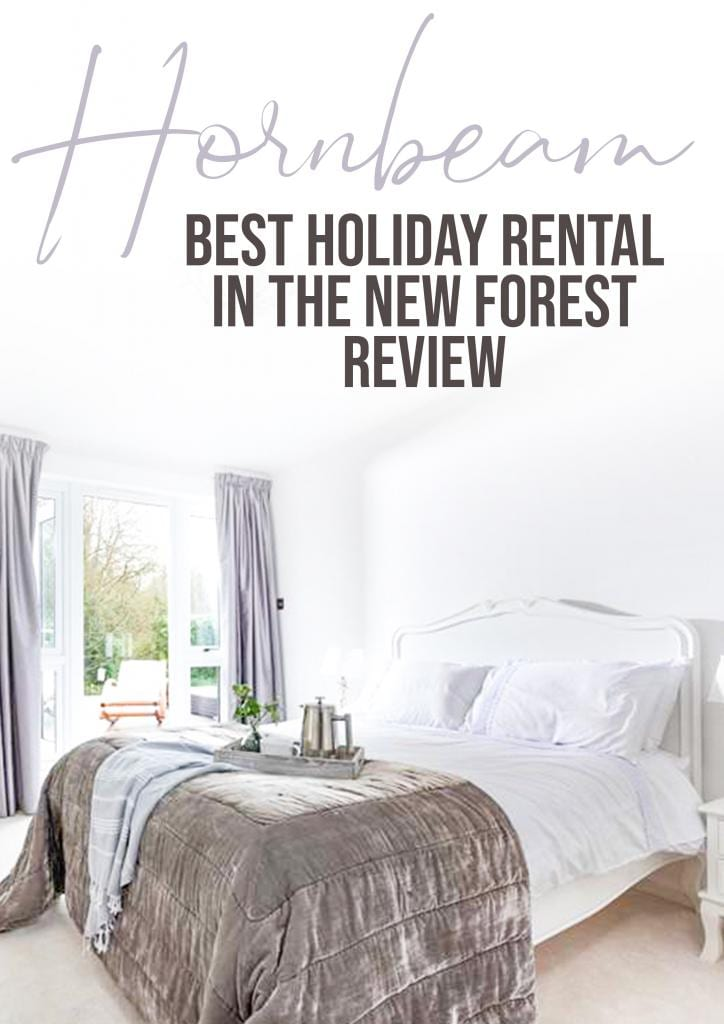 new forest best holiday rental