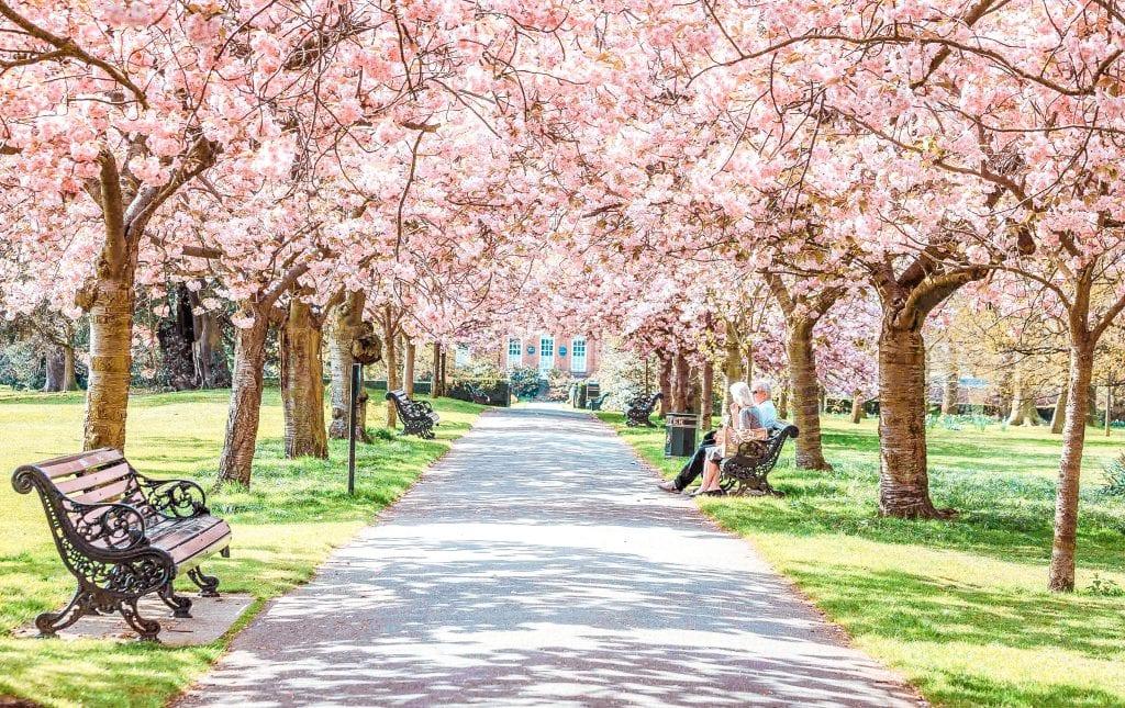 best picnic spots London greenwich park london