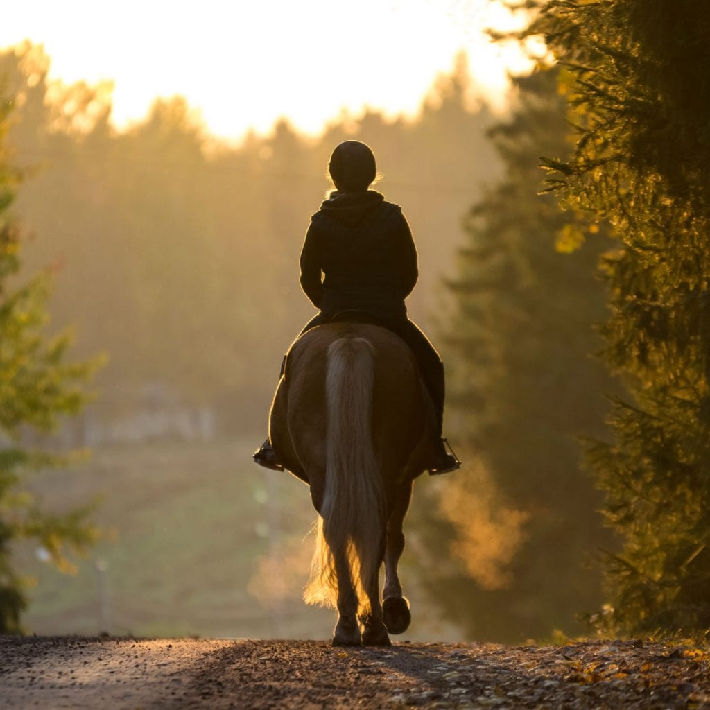 cotswolds horse riding romantic cotswolds visit what to do