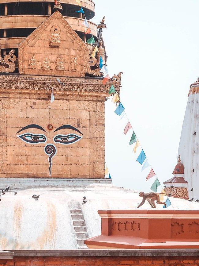 HERO IMAGE best time to visit nepal