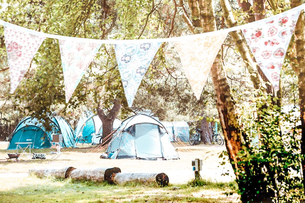 dorset campsite Burnbake Campsite and Forest Lodges