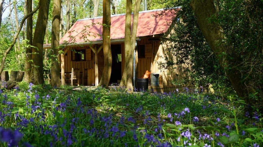 dorset-campsite-Forest-Garden-Shovelstrode