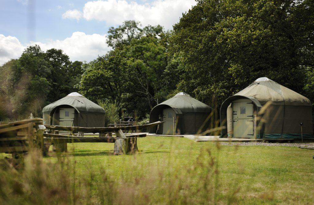 dorset-campsite-Stock-Gaylard-Yurts