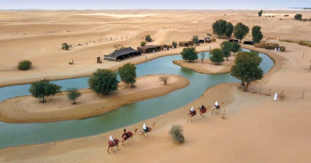 best dubai desert safari camel caravan