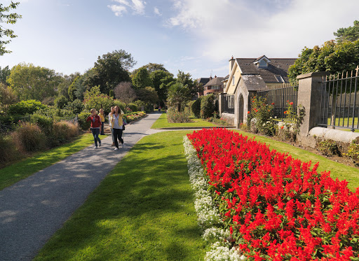 best things to do in Tralee town park