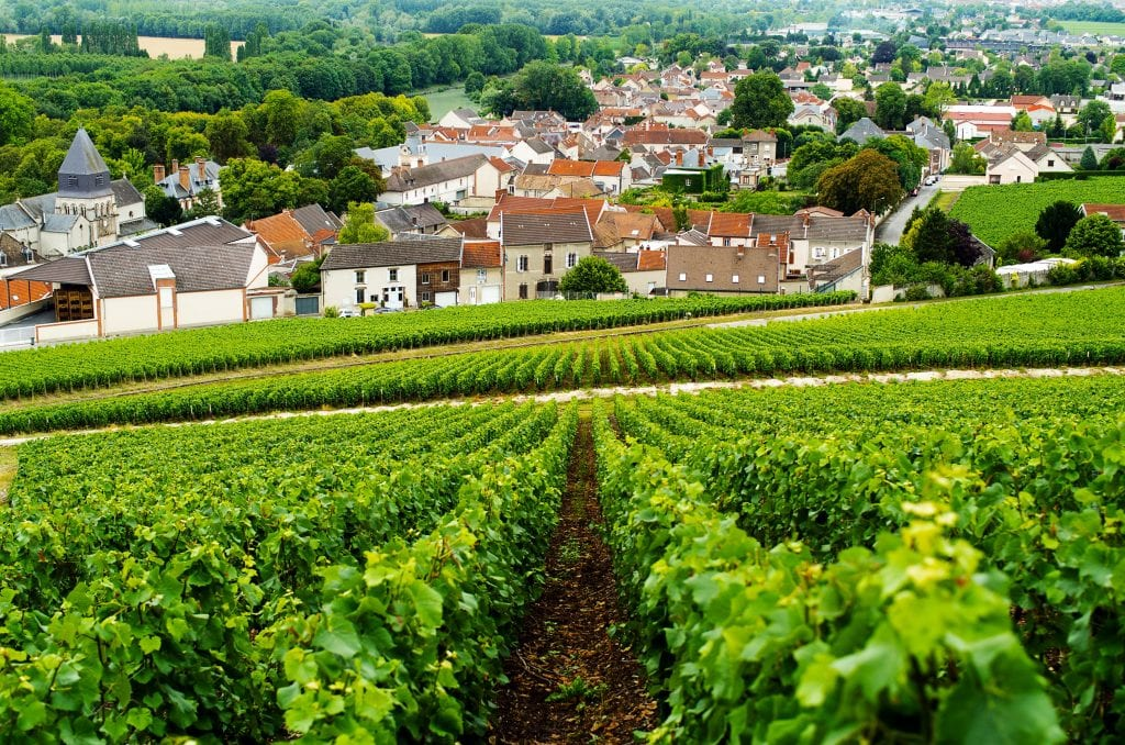 best champagne tours form reims ay