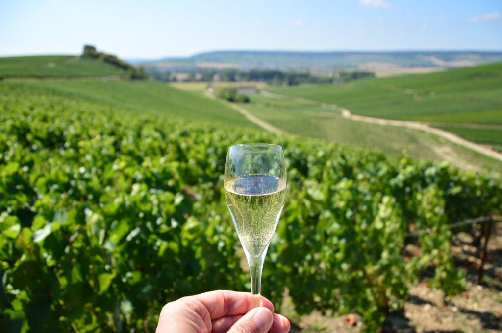 best champagne tours from reims champagne making