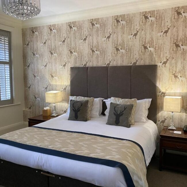best hotels in Milford on Sea forest park bedroom