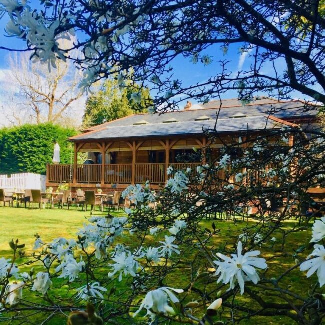 best bed and breakfast new forest spot in the woods outside