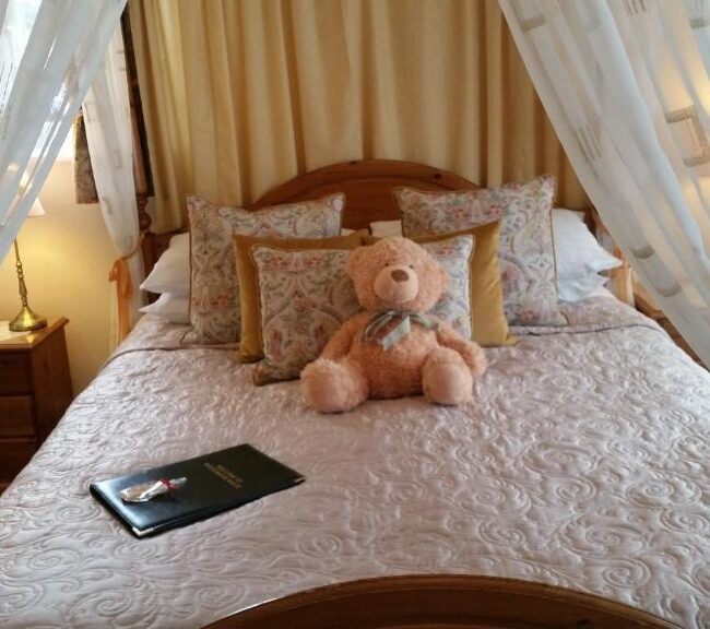best bed and breakfast new forest whitemoor house bed