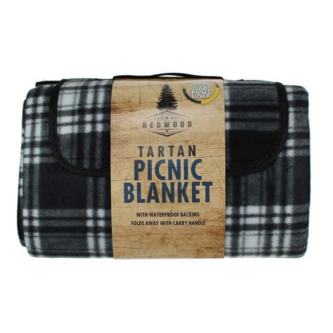 best camping gear picnic blanket