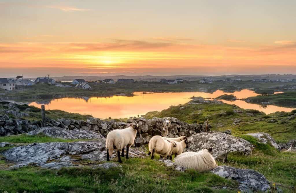 Ireland weather summer