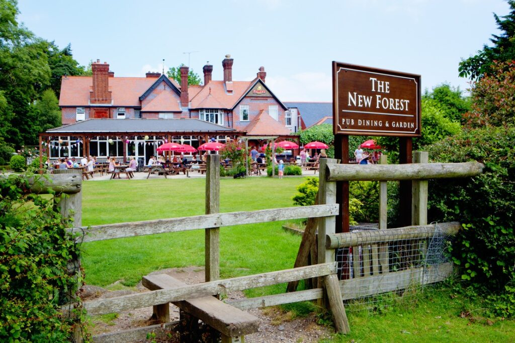 best pubs new forest new forest inn