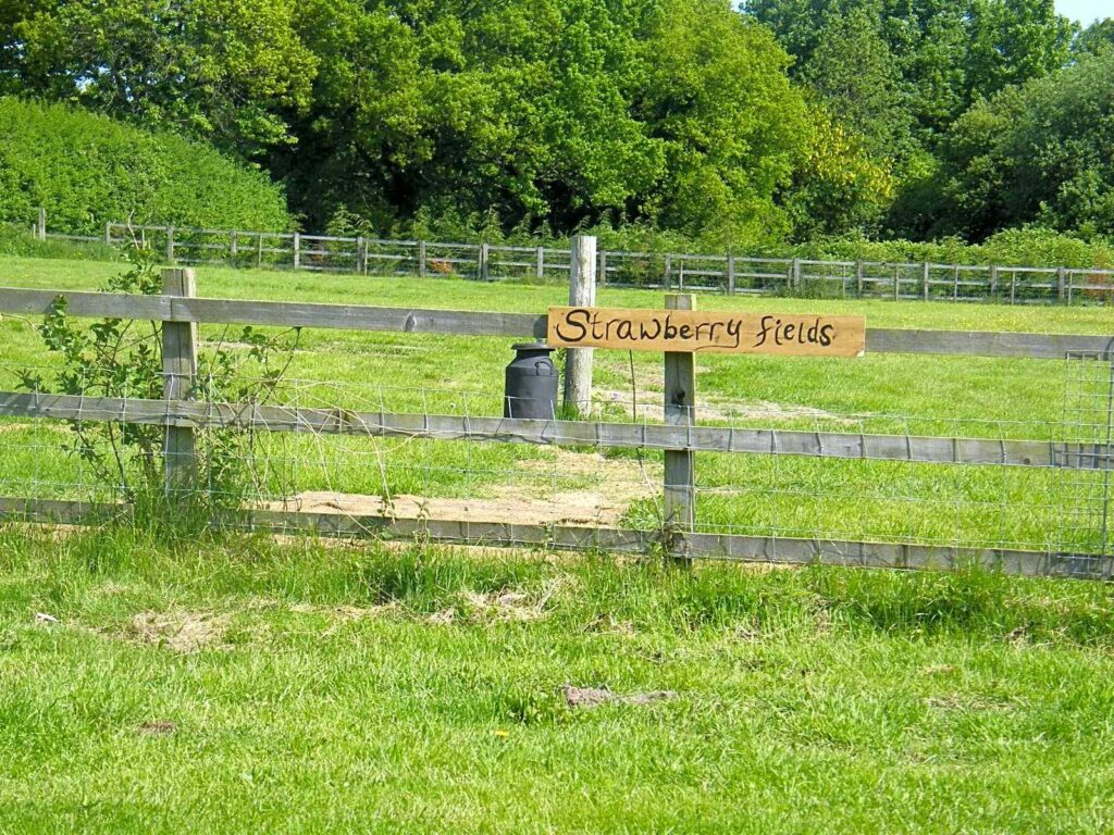 best camping southampton Strawberry Fields Certificated Site