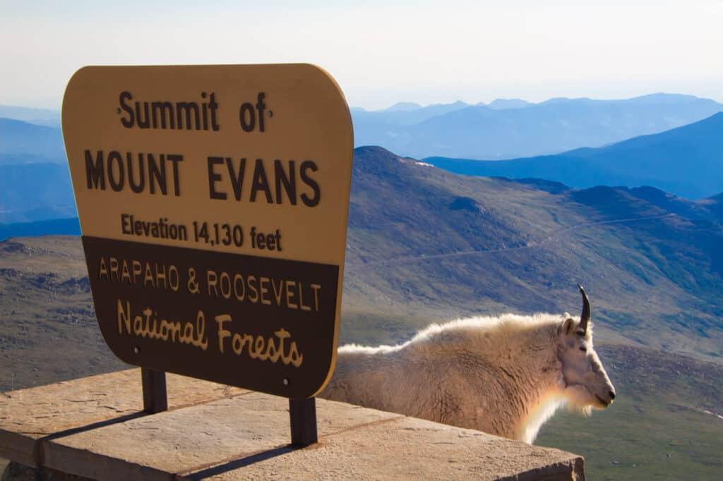 best day trips from denver mount evans