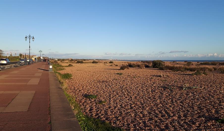 best portsmouth beaches Eastney Beach Portsmouth